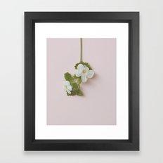 Floral Variations No.1 Framed Art Print
