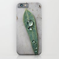 After The Rain iPhone 6 Slim Case