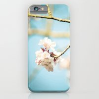 iPhone & iPod Case featuring Cherry Blossom, Pink Flowers and Blue Sky. by Eyeshoot Photography