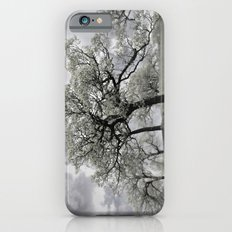 Looking at a dreamy Disposition Slim Case iPhone 6s
