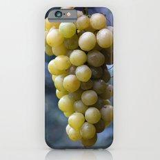 Harvest time ... 8508 iPhone 6s Slim Case