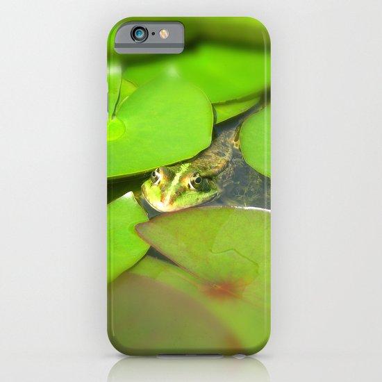green frog I iPhone & iPod Case