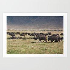Ngorongoro Art Print