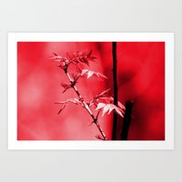 Red Leaf Art Print