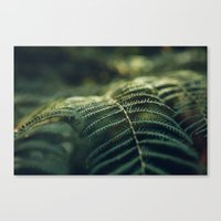 Green and Golden Canvas Print