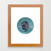 seal Framed Art Print