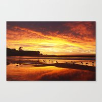Coogee Sunrise Canvas Print