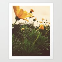 Post-Rain Yellows Art Print