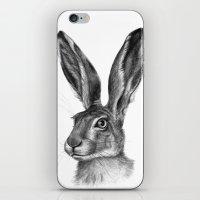 Cute Hare portrait G126 iPhone & iPod Skin