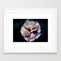 Clear Vision Framed Art Print