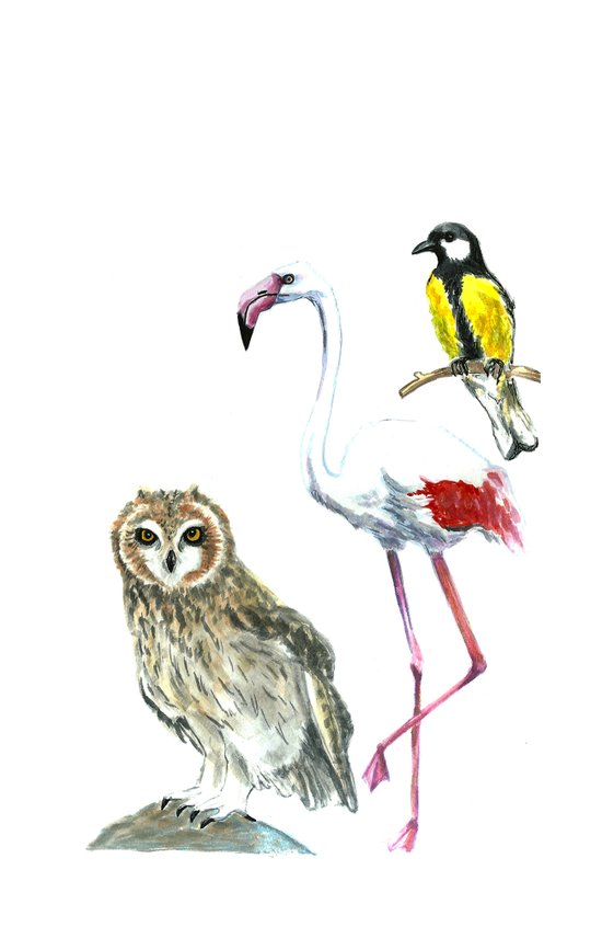 Birds 2 Canvas Print