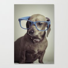 Dogs think they're sooo smart... Canvas Print