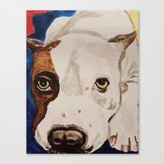 Pit Bull Portrait Canvas Print