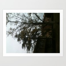 The tree tells a story Art Print