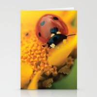 Ladybug macro still life  Stationery Cards
