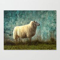 Vintage Sheep Canvas Print