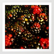 Berry Berry Art Print