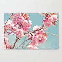 Cherry cherry Canvas Print
