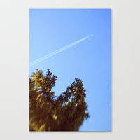 Fly July  Canvas Print