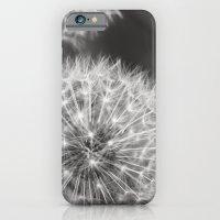 Dandelion Wishes iPhone 6 Slim Case