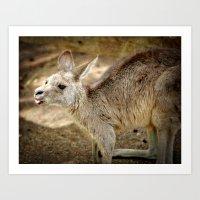 Razzie Kangaroo Art Print
