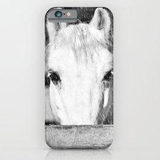 Winter Horse iPhone 6 Slim Case