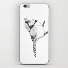 Black and White Blue Jay iPhone & iPod Skin