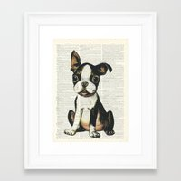 Boston Terrier Vintage Puppy Framed Art Print
