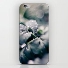 Abstraction iPhone & iPod Skin