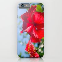iPhone & iPod Case featuring hibiscus in Thailand by Theresia Pauls