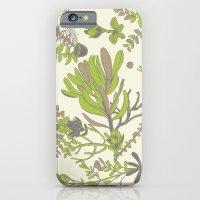 Cream Cradle Flora iPhone 6 Slim Case