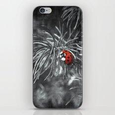 The Ladybug iPhone & iPod Skin