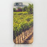 Vineyards 3 iPhone 6 Slim Case
