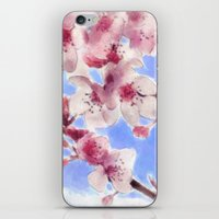 Japanese Cherry Blossoms iPhone & iPod Skin