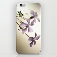 Sorrel iPhone & iPod Skin