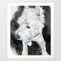 Jacob the Westie Art Print