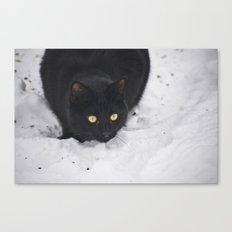 Black cat in a snow Canvas Print