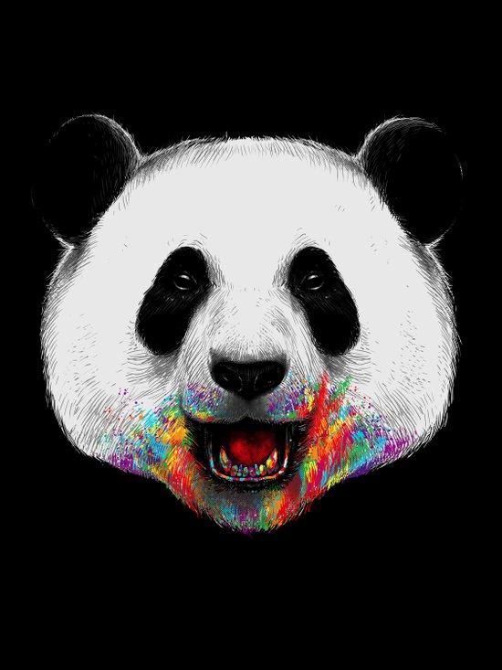 Where is the Rainbow? Canvas Print
