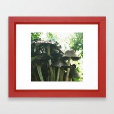 Magic mushrooms series - take 1 Framed Art Print
