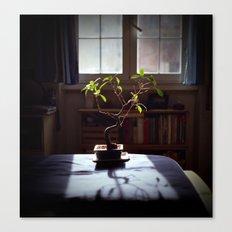 Zen Life Canvas Print