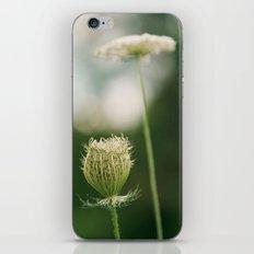 Wildflower 2 iPhone & iPod Skin