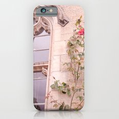 Rose Window iPhone 6 Slim Case