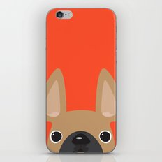 This is Enzo iPhone & iPod Skin