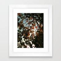 Seasonal Framed Art Print