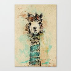 Lama Canvas Print
