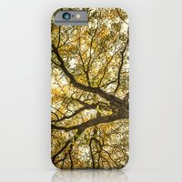 Acacia iPhone 6 Slim Case