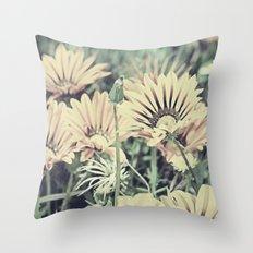 Desert Daisies - Daisy Project in memory of Mackenzie Throw Pillow