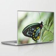 Birdwing Butterfly Laptop & iPad Skin