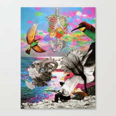 MIJA Draft #2 Canvas Print