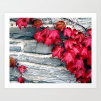 Fall's Ivy In New Englan… Art Print